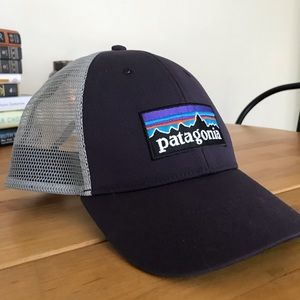 Patagonia Trucker Hat - Purple and Gray